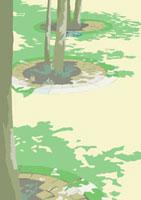 街路樹が映す木漏れ日