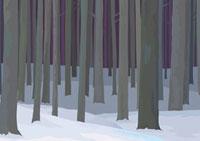 沢山の木が生える雪の積もった森