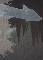 夜の深い森の空中をさまよう鹿 02474000042| 写真素材・ストックフォト・画像・イラスト素材|アマナイメージズ