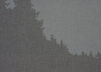 深い森のシルエット