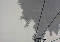 雪の積もった樹木とロープウェイ