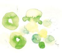 水彩 緑の重なる丸