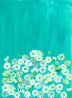 白い花 緑の背景