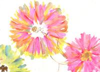 鳥と花 02479000119| 写真素材・ストックフォト・画像・イラスト素材|アマナイメージズ