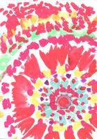 花、 02479000168| 写真素材・ストックフォト・画像・イラスト素材|アマナイメージズ