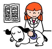 犬の具合を診ている女性の獣医師