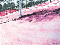 水彩画 芝桜 02488000003| 写真素材・ストックフォト・画像・イラスト素材|アマナイメージズ