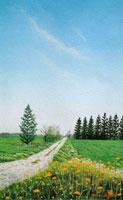 水彩画 あの人に続く道 02488000005| 写真素材・ストックフォト・画像・イラスト素材|アマナイメージズ