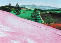水彩画 芝桜の彩り 02488000016| 写真素材・ストックフォト・画像・イラスト素材|アマナイメージズ