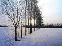 水彩画 希望の光 02488000020| 写真素材・ストックフォト・画像・イラスト素材|アマナイメージズ