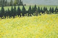 水彩画 花畑の向こう側 02488000028| 写真素材・ストックフォト・画像・イラスト素材|アマナイメージズ