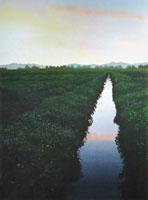 水彩画 小川の夜明け