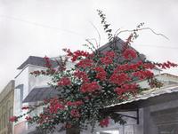水彩画 屋根の上の花 02488000053| 写真素材・ストックフォト・画像・イラスト素材|アマナイメージズ