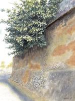 水彩画 土壁と木