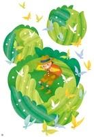 春キャベツのまわりを舞う蝶と男の子
