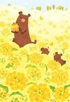 春の菜の花畑ではちみつを持つクマの親子