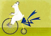 自転車を漕ぐシロクマ 02494000070| 写真素材・ストックフォト・画像・イラスト素材|アマナイメージズ