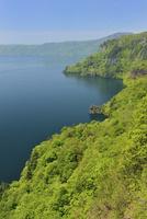 瞰湖台から望む新緑の十和田湖