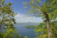 甲岳台から望む新緑の十和田湖と八甲田山