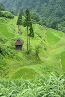 留守原の棚田と茅葺き小屋