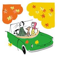 紅葉を見ながらドライブする男女と犬