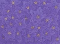 桔梗の花のパターン