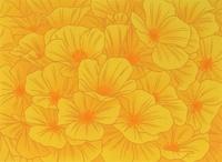 黄色の花のパターン 02518000028| 写真素材・ストックフォト・画像・イラスト素材|アマナイメージズ