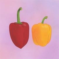 赤と黄色のパプリカ 02518000055| 写真素材・ストックフォト・画像・イラスト素材|アマナイメージズ