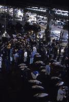 塩釜港魚市場のセリ風景