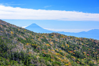 前国師ヶ岳より紅葉と富士山 02577001172| 写真素材・ストックフォト・画像・イラスト素材|アマナイメージズ