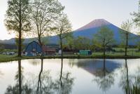 未明の富士山