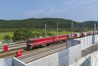 走行中の貨物列車