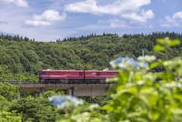 青函トンネルから出てきた貨物列車