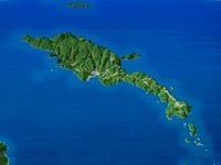 小笠原諸島世界自然遺産母島2