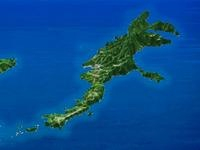 小笠原諸島世界自然遺産母島1