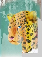 ジャガー 02619000063| 写真素材・ストックフォト・画像・イラスト素材|アマナイメージズ