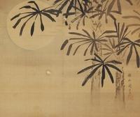 月下の棕櫚(A HEMP PALM WITH MOON) 02626000007| 写真素材・ストックフォト・画像・イラスト素材|アマナイメージズ