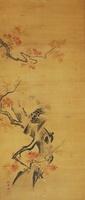 紅葉するモミジ(MAPLE TREE IN AUTUMN)