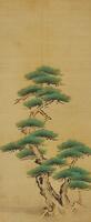 松の木(PINE TREE)