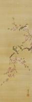 梅と野鳥 02626000038| 写真素材・ストックフォト・画像・イラスト素材|アマナイメージズ