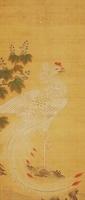 鳳凰(THE PHOENIX) 02626000060| 写真素材・ストックフォト・画像・イラスト素材|アマナイメージズ