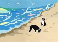 浜辺で遊ぶ二匹の犬