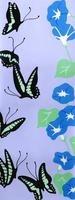 蝶と朝顔 02632000082| 写真素材・ストックフォト・画像・イラスト素材|アマナイメージズ