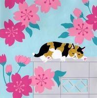 塀の上に横たわる猫