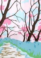 桜並木 02632000101| 写真素材・ストックフォト・画像・イラスト素材|アマナイメージズ