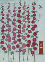 並ぶたくさんの赤いタチアオイ 02640000059| 写真素材・ストックフォト・画像・イラスト素材|アマナイメージズ