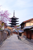 京都 桜咲く八坂の塔と町並み
