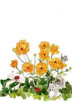オレンジの花とリス