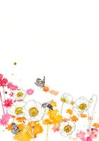 白い花と蝶とハチとピンクのシルエット
