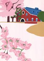 桜満開な 02650000100| 写真素材・ストックフォト・画像・イラスト素材|アマナイメージズ